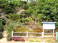 沖永良部島の笠石風葬跡