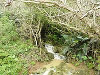 沖永良部島の沖泊の滝 - ビーチ部分になるとこんなに小さく