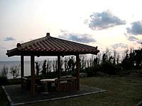沖永良部島のフローラルパークの写真