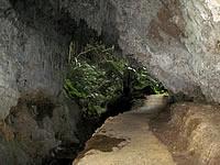沖永良部島の昇竜洞出口