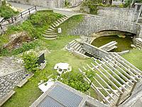 沖永良部島のジッキョヌホーの写真