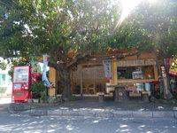 奥武島の軽食と雑貨の店 まいむ - 木陰が心地よさそうです