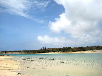 奥武島西の海