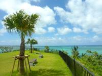 瀬長島の展望公園 - 緑豊かでそのさきの海の青色とマッチ