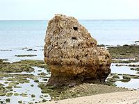 瀬長島の西のビーチ/子宝岩 - 子宝岩はそもそも復元されたもの