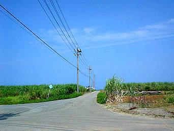 瀬底島の瀬底集落の道「集落の道は車では通行できないので、歩いて行きましょう」