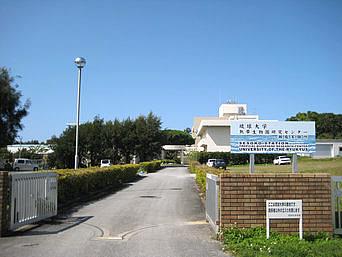 瀬底島の琉球大学熱帯園研究センター瀬底実験所「瀬底島東側で一番大きな施設かも?」