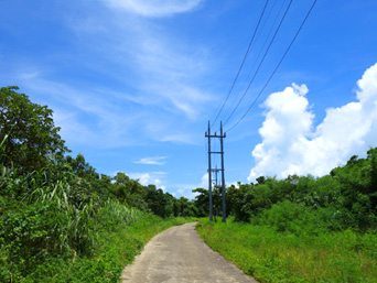竹富の周遊道路