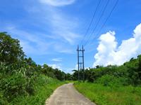 竹富島の竹富の周遊道路