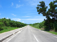 竹富島の竹富の周遊道路 - 車が多く通る内側の周回道路