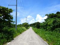 竹富島の仲筋集落/コンドイビーチ/星砂の浜への道 - 海の近くの道はどこもいい雰囲気