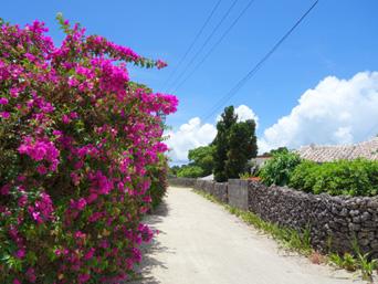 竹富島の竹富の集落の道