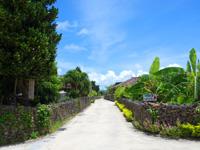 竹富島の竹富の集落の道 - 港から集落までの道