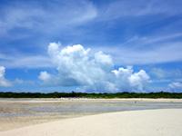竹富島のコンドイビーチ沖 - かなり遠くまで行けます