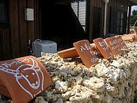 竹富島のお食事処かにふ - 道沿いには赤瓦のメニュー