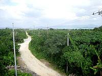 竹富島のクスクムリ/クースクムイ/小城盛 - 港側の景色はなかなかいい感じ