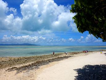 竹富島の星砂の浜「星砂は見つかっても数粒レベル!」