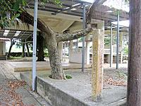 多良間島「ぴとぅまたうがん/ヒトマタウガン/ウガム゜」