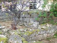 多良間島のウプメーカ/ミャーカ - お墓のようなものが複数ある?