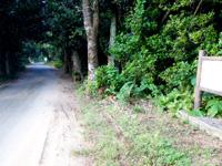 多良間島の運城御嶽のフクギ並木 - フクギ並木の案内もあります