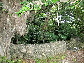 多良間島のナガシガー「綺麗な石積みのガーです」