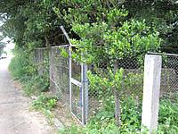 多良間島のナガシガー - でも金網に囲まれています