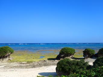 多良間島のミッジトゥブリ/三ツ瀬公園「三ツ瀬といえばこの海の岩が特徴的」