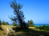 多良間島のミッジトゥブリ/三ツ瀬公園 - 名前は公園ですが広場とかはありません