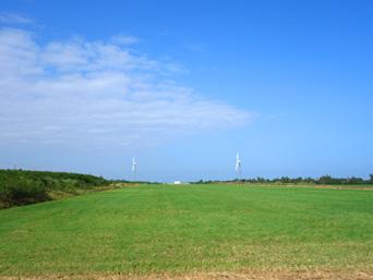 旧多良間空港滑走路/可倒式風力発電「たらまる」/メガソーラー/多良間村ヤギ加工施設