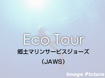 多良間島の郷土マリンサービスジョーズ/JAWS2