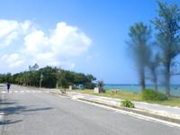 多良間島のたらま島一周マラソン大会 - 多良間島の外周道路を一周+α