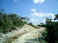渡嘉敷島の前岳林道展望台 - 展望台までは一応?整備されています