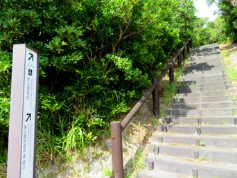 渡嘉敷島の照山展望台への道/森林公園「展望台までの道からの景色がまた良いです」