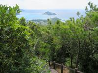 渡嘉敷島の照山展望台への道/森林公園 - ここから展望台まで登ります