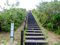 渡嘉敷島の照山展望台への道/森林公園 - 道の途中途中で水平線が望めます