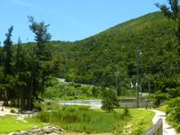 渡嘉敷島のトカシクビーチと阿波連を結ぶ道の写真