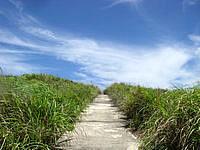 渡嘉敷島ウン島のウン島 - ウン島の中でもまともな道
