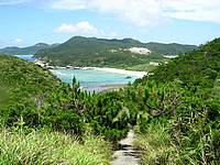 渡嘉敷島ウン島のウン島 - ウン島の道はかなり険しい