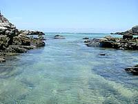 渡嘉敷島ウン島のウン島と渡嘉敷島の間の海の中 - ルリスズメダイが多少いる程度