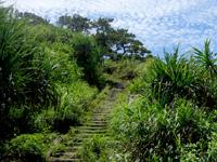 渡嘉敷島の阿波連展望台/クバンダキ展望台 - この先にビーチを一望できる展望台が