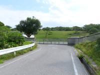 渡嘉敷島の村道大谷線/赤間山林道 - ハイキングコースってここまで来るのが大変!