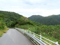 渡嘉敷島の村道大谷線/赤間山林道 - トカシク側へ下る道は急勾配