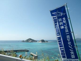 渡嘉敷島の鯨海峡とかしき島一周マラソン大会コース「青い海を見ながら走れるコースもある」