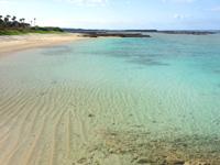 徳之島のヨナマビーチ/与名間浜 - 駐車場側はいい感じの天然ビーチ