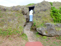 徳之島の犬の門蓋/メガネ岩 - メガネ岩への道