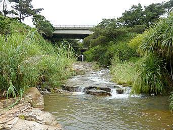 田行の滝への道/田行川