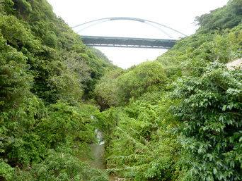 阿権の滝への道