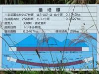 徳之島の徳之島トンネル - 全長300mと離島では長いトンネル