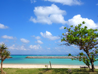 渡名喜島の東り浜/あがりはま - 消波ブロックはありますがのどかな光景です