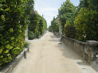 渡名喜島の村道1号線/フットライト - 味のあるこの道はずっとこのままで!
